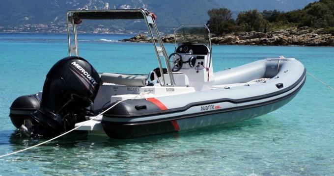 Alquiler Neumática en Saint-Florent - MRL Ribs Predator 650 TS