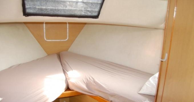 Alquiler de barcos Cuffy barato de tasman