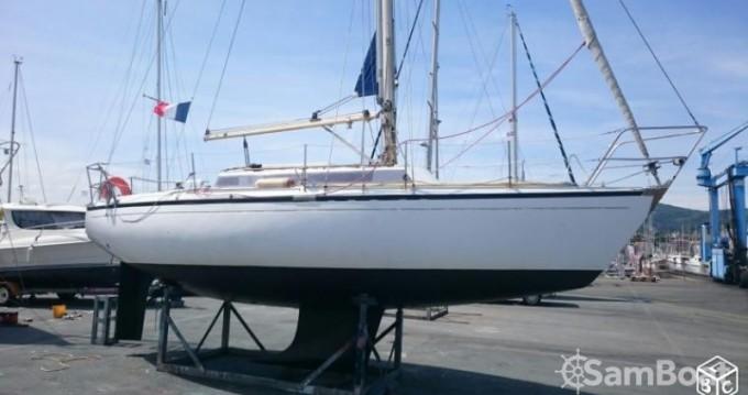 Alquiler de barcos Hendaye barato de Safari