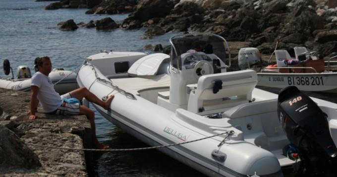 Alquiler de barcos Beluga Open 21 enLuri en Samboat