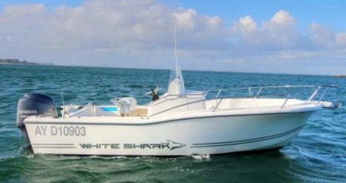 Alquiler Lancha White Shark con título de navegación