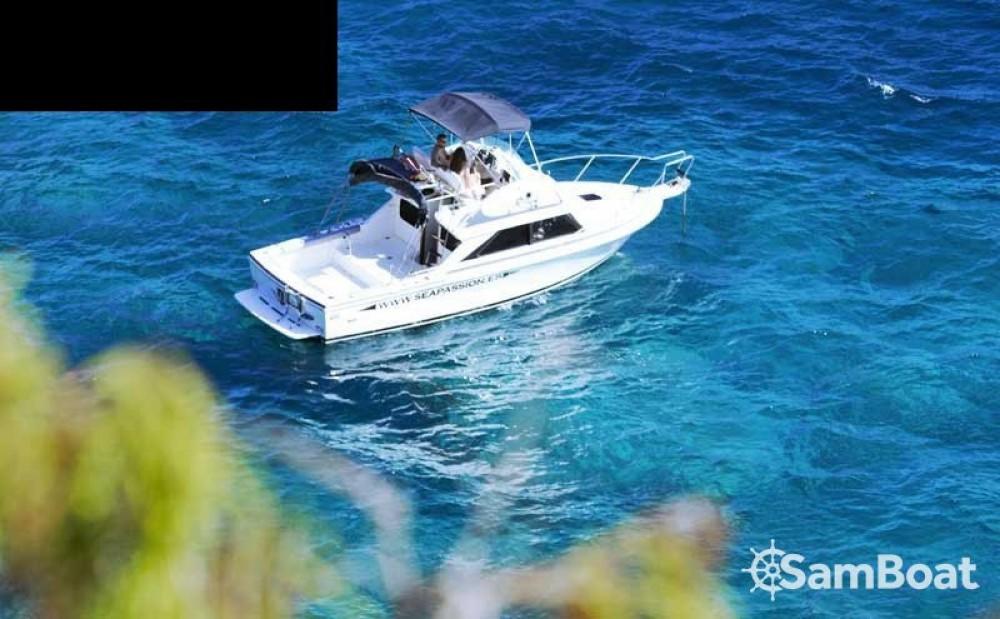 Alquiler Lancha Bertram con título de navegación