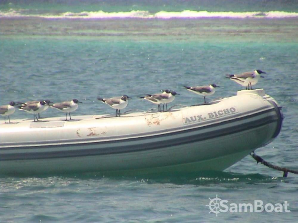 Alquiler de yate Pointe-à-Pitre - Jeanneau Sun Magic 44 en SamBoat