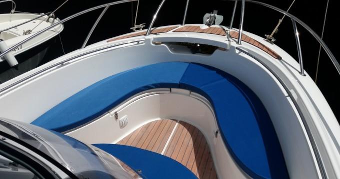 Alquiler Lancha Marion Yacht con título de navegación