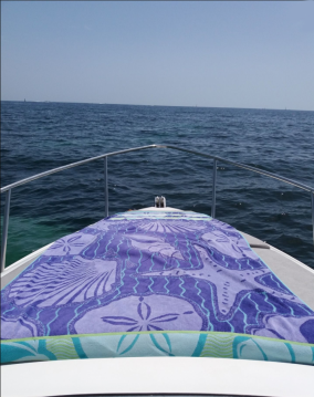 Alquiler Lancha en Cannes - Sessa Marine Oyster 22