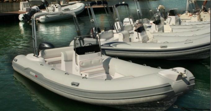 Alquiler Neumática en Salerno - Italboats Predator 599 AS