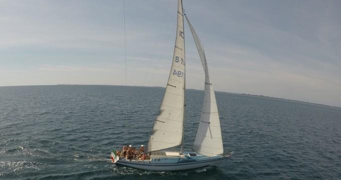 Alquiler Velero Bianca con título de navegación
