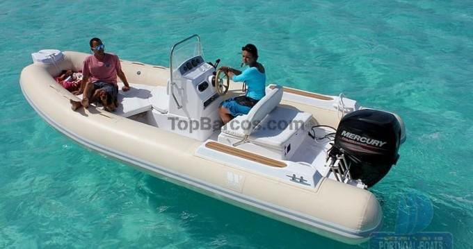 Tiger SPORTLINE 550 entre particulares y profesional Vrsar-Orsera
