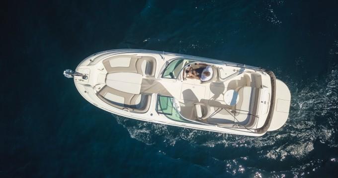 Alquiler Lancha en Mandelieu-la-Napoule - Sea Ray Sea Ray 240 Sundeck