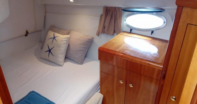 Alquiler Lancha Starfisher con título de navegación