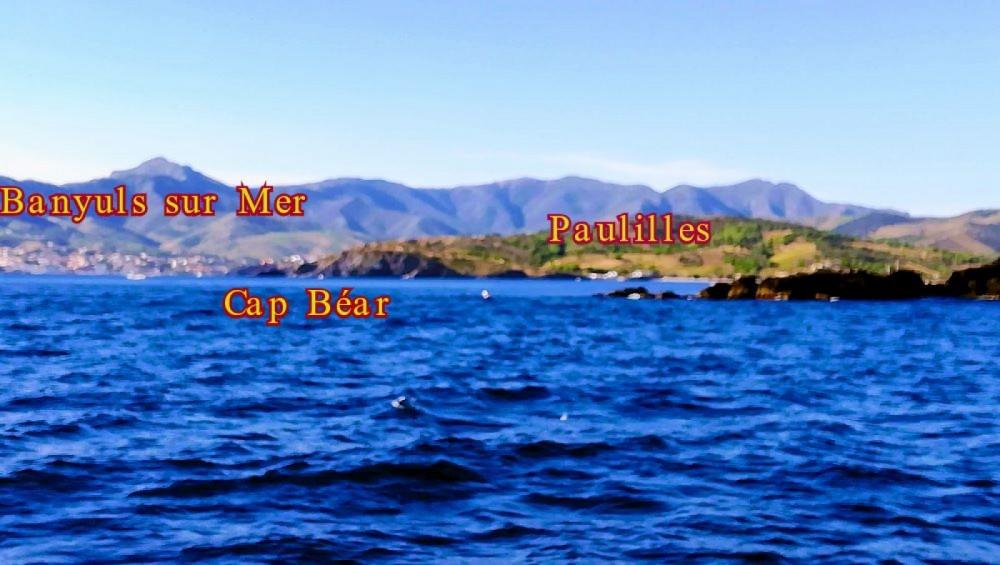 Alquiler Lancha en Argelès-sur-Mer - Quicksilver Activ 555 Cabin