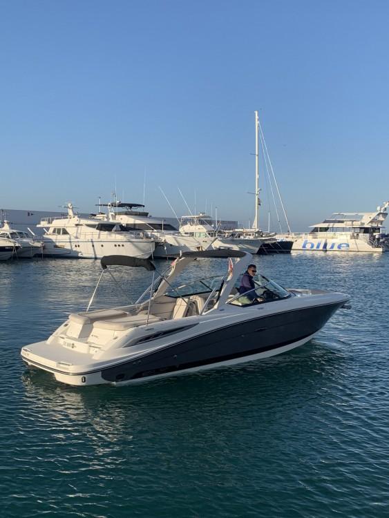 Alquiler de Lancha, con o sin patrón Sea Ray Marbella