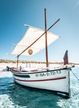 Pascual Illes Medes entre particulares y profesional Formentera
