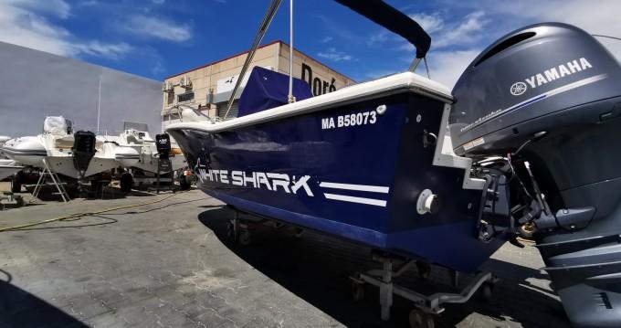 Alquiler Lancha en Marseille - White Shark White Shark 205