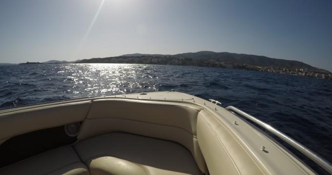 Alquiler de Sea Ray Sea Ray 260 Sundeck en Portals Nous