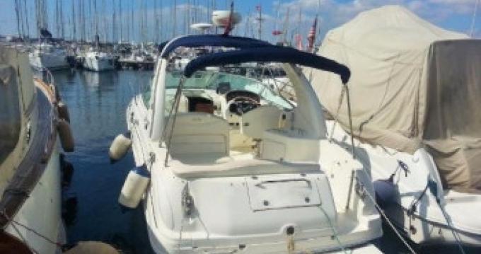 Alquiler Lancha en Estepona - Sea Ray Sea Ray 315 Sundancer