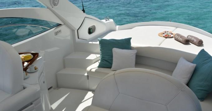 Alquiler de yate Ibiza (Ciudad) - Pershing Pershing 37 en SamBoat