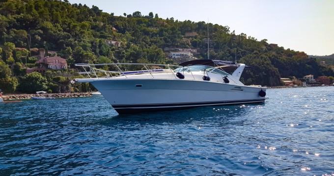 Alquiler de Riviera open offshore open 40  en Mandelieu-la-Napoule