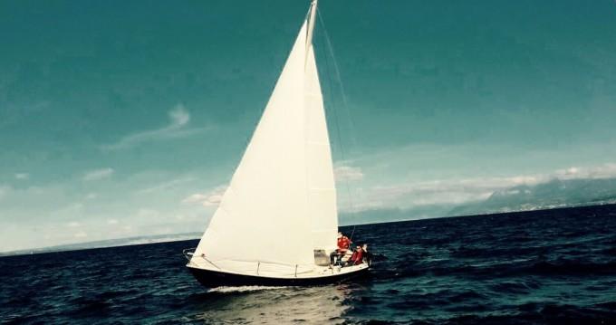 Alquiler Velero Boxer Cantieri con título de navegación
