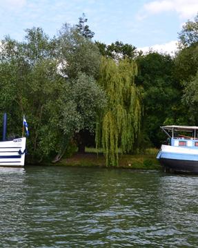 Alquiler de barcos Boulogne-Billancourt barato de suntracker