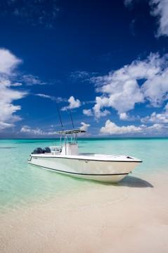 Alquiler Lancha contender 28 con título de navegación