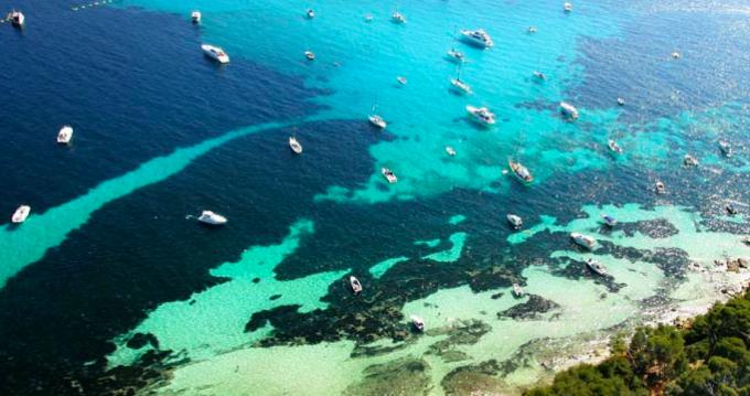Alquiler de yate Cannes - Blue Ocean Blue Ocean 45 en SamBoat