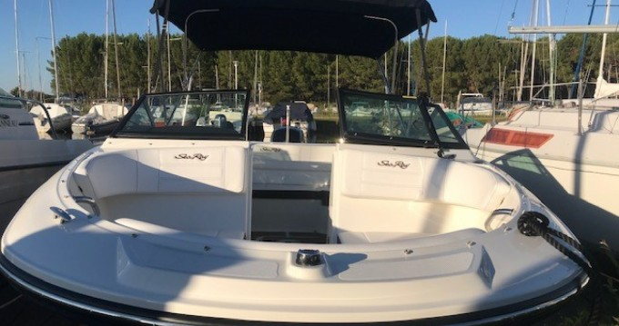 Sea Ray SPX 190 OB entre particulares y profesional Biscarrosse