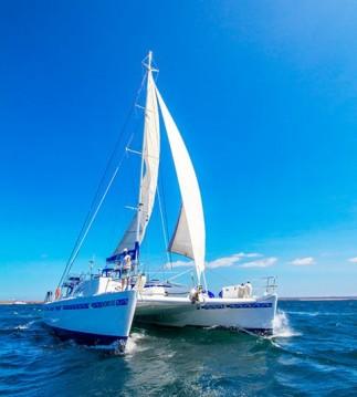 Alquiler de Catamarán, con o sin patrón Nemo Santa Rosa
