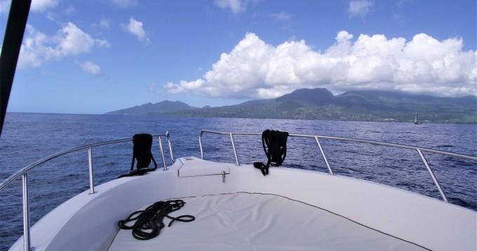 Alquiler de barcos Basse-Terre barato de White shark 226