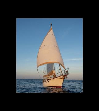Alquiler de barcos Belliure Endurance 35 enAlicante en Samboat