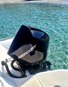 Alquiler Neumática Motonautica-Vesuviana con título de navegación