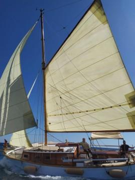 Poseidon Bluewater 480 entre particulares y profesional Palma de Mallorca