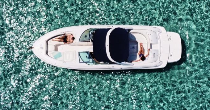 Sea Ray Sea Ray 295 Bow Rider entre particulares y profesional Isla de Ibiza