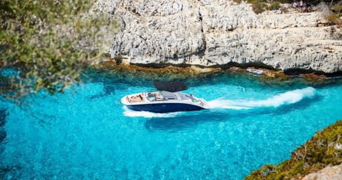 Alquiler de yate Cannes - Sea Ray SDX 270 en SamBoat