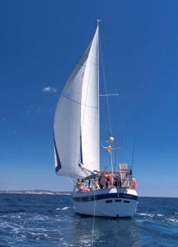Alquiler de Caribean Sailing Yachts CSY 44 en Isla de Ibiza