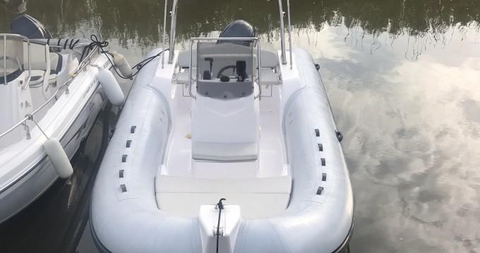 Joker Boat Joker Boat 630 entre particulares y profesional Hyères