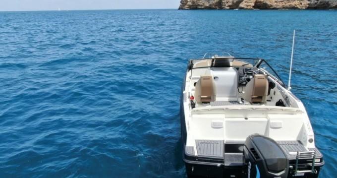 Alquiler Catamarán en Dénia - Quicksilver Quicksilver 230